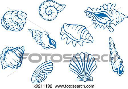 Ocean Shells Drawing Set of Ocean Seashells