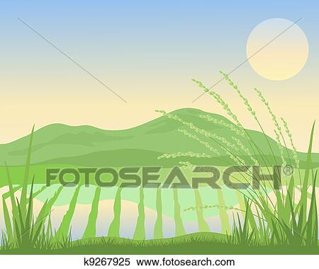 Clipart of paddy fields k9267925 - 28.0KB