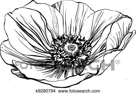 剪贴画 罂粟, 花