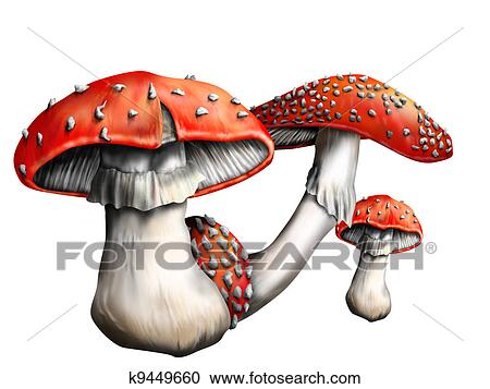 banque d 39 illustrations champignon magique k9449660 recherchez des cliparts des. Black Bedroom Furniture Sets. Home Design Ideas