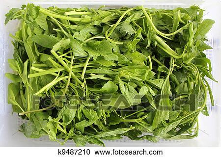 крест салат фото
