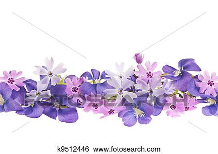 Stock images of purple spring flower border k9512446 search stock arrangement of purple violets and moss pink flowers isolated on white background mightylinksfo