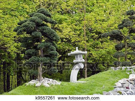 Banques de photographies bonsai arbres dans jardin japonais k9557261 recherchez des Jardin japonais bonsai