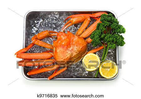 Pictures Of Red Snow Crab 99