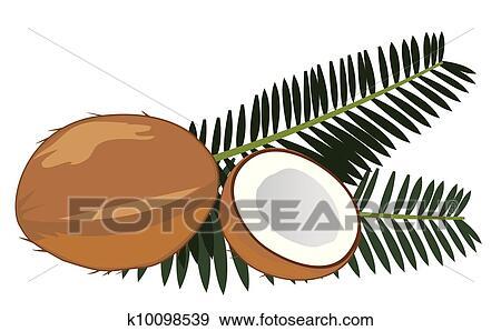 Clipart noix coco k10098539 recherchez des cliparts - Dessin noix de coco ...