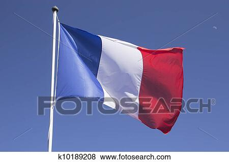 Pictures of french