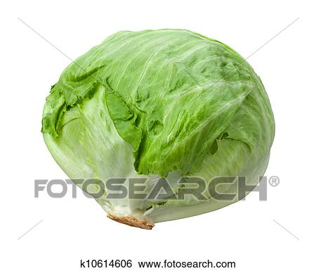 Stock Images of Lettuce Head Isolated on White k10614606 ...