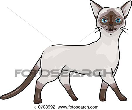 Clipart gatto siamese k10708992 cerca clipart for Gatto clipart