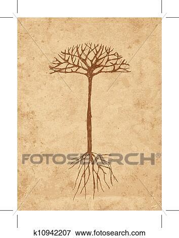 Clipart croquis arbre racines sur vieux grunge - Croquis arbre ...