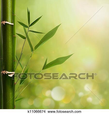 banque de photo naturel zen arri re plans bambou feuilles k11066674 recherchez des. Black Bedroom Furniture Sets. Home Design Ideas