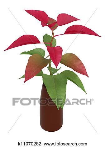 剪贴画 - 家, 植物, 带, 绿色, 同时,, 红的树叶.图片
