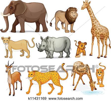 剪贴画 - 动物
