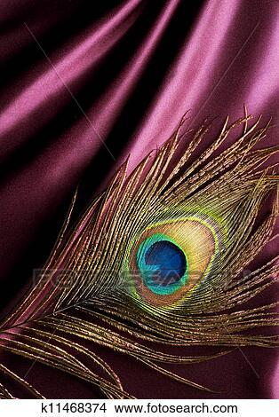 手绘图 - 孔雀羽毛, 结束