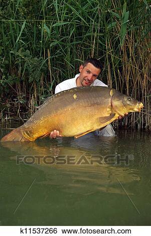 Archivio di immagini pesca scena carpa pesca - Carpa a specchio ...