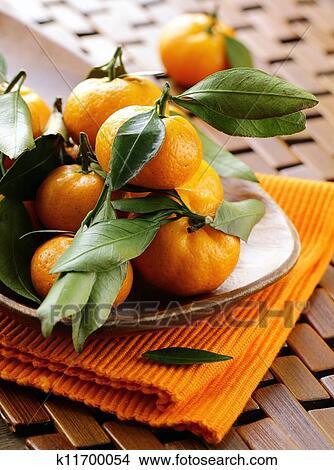 Tangerine encyclopedia tangerine online sale