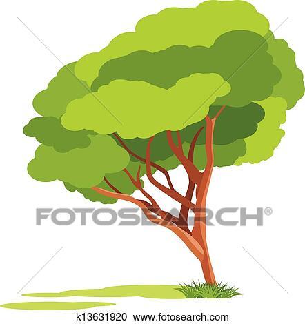 剪贴画 - 春天, 树, 隔离, 在上, the, 白色.图片