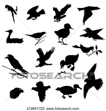 手绘图 - 鸟
