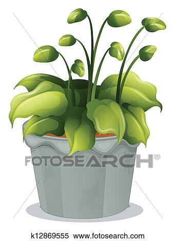 clipart a plante verte dans a gris pot k12869555 recherchez des clip arts des. Black Bedroom Furniture Sets. Home Design Ideas