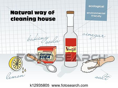 Natural House Cleaning Product Subscription
