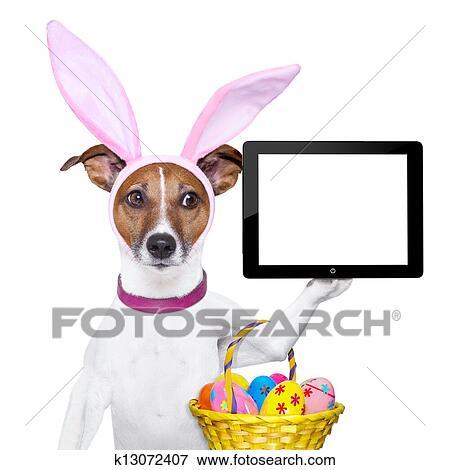 Image rigolote paques chien k13072407 recherchez des - Image rigolote de paques ...