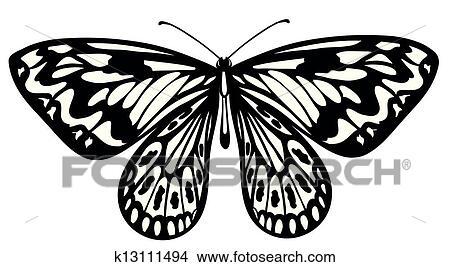 剪贴画 黑白, 蝴蝶, 隔离