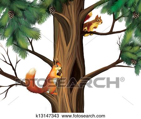 drawing of squirrels on the tree two cute squirrels