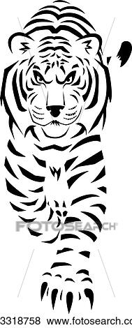 Clipart tigre blanc k13318758 recherchez des cliparts - Tigre blanc dessin ...