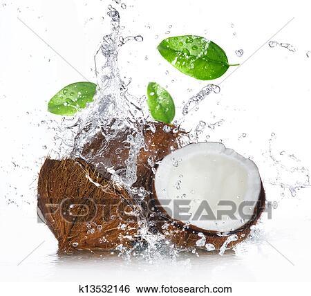 stock bilder rissig kokosnuss mit spritzen wasser k13532146 suche stockfotografie. Black Bedroom Furniture Sets. Home Design Ideas