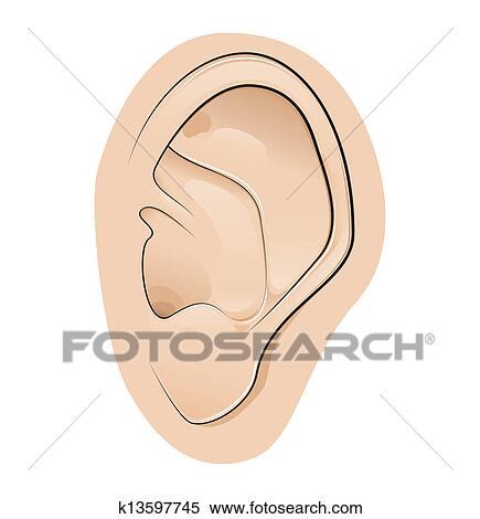 Clipart oreille k13597745 recherchez des clip arts - Clipart oreille ...