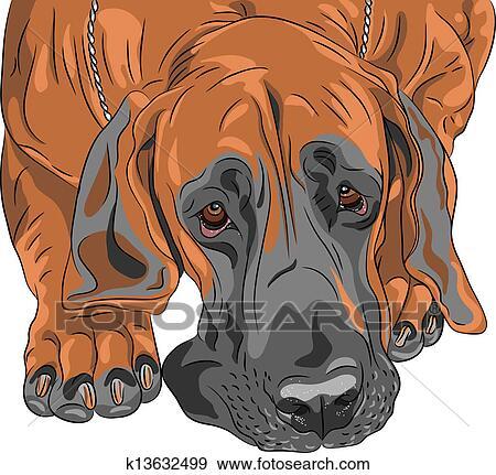 Clip art vettore primo piano schizzo cane domestico for Piano di abbozzo domestico
