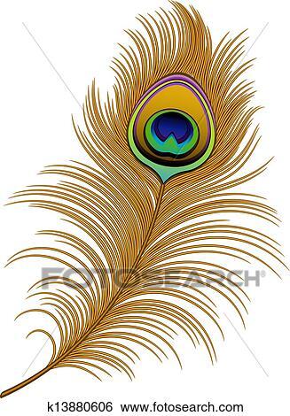 Clipart plume paon k13880606 recherchez des cliparts des illustrations des dessins et des - Plume de paon dessin ...