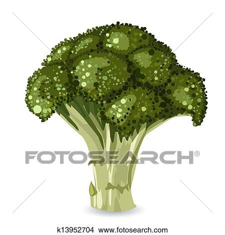 Clipart of broccoli k13952704 - Search Clip Art ...