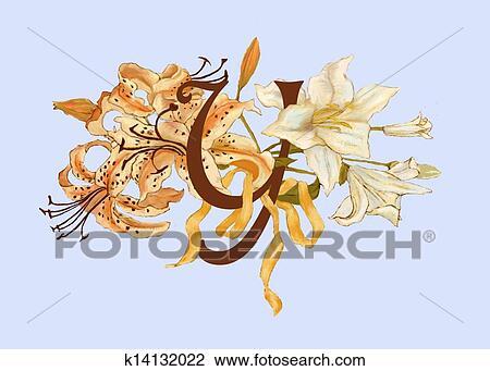 剪贴画 - monogram, y, 带, 百合花