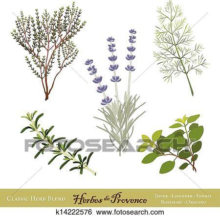 clip art herbes de provence franzoesischer kr uter k14222576 suche clipart poster. Black Bedroom Furniture Sets. Home Design Ideas