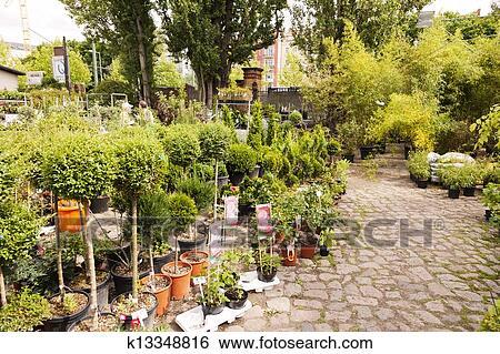 stock bilder pflanzen kinderzimmer an mauerpark tr del berlin deutschland k13348816. Black Bedroom Furniture Sets. Home Design Ideas