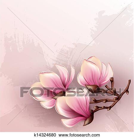 Clipart magnolia ramo acquarello illustrazione for Magnolia pianta prezzi