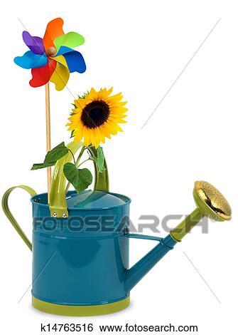 创意设计图片在线 - 喷壶, 带, 向日葵 k14763516图片