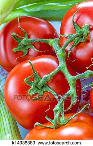 Stock Photo of vine tomatoes k14938883 - Search Stock ...