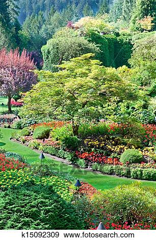 Stock Photograph Of Sunken Garden At Butchart Gardens K15092309 Search Stock Photography