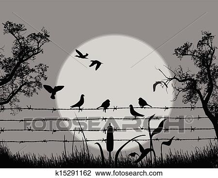 Clipart   pássaros, ligado, arame farpado, ligado, bonito ...