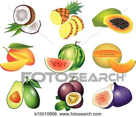 Clip art frutta esotica vettore set k15510956 cerca for Clipart frutta