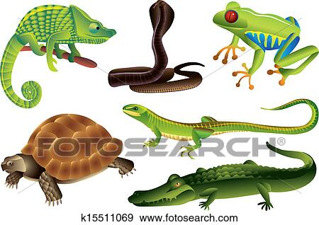 Clip Art of reptiles and amphibians set k15511069 - Search ...
