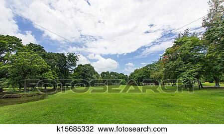 stock foto gr ner rasen und b ume mit blauer himmel an dass ffentlicher park k15685332. Black Bedroom Furniture Sets. Home Design Ideas
