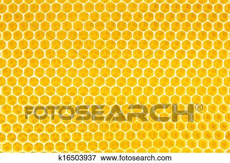 Picture of honey in honeycomb background k16503937 search stock picture honey in honeycomb background fotosearch search stock photography photos prints voltagebd Image collections