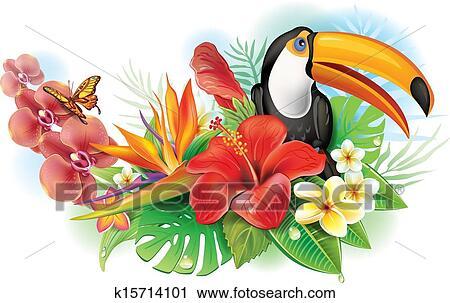 Clipart rouges hibiscus toucan et fleurs tropicales - Fleur d hibiscus dessin ...