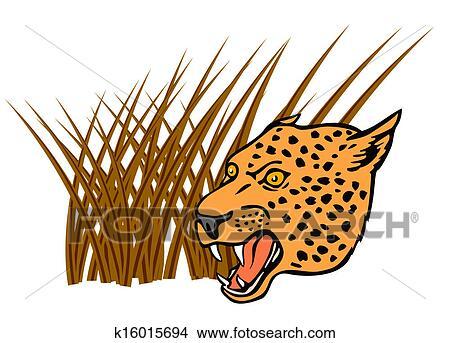 手绘图 - 豹, 头