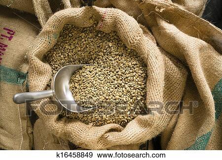 coleccin de fotografa crudo caf semillas bulto pala bolsa arpillera