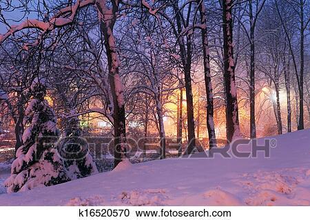 Stock fotografie sneeuw op loofbomen en stadslichten k16520570 zoek stockfoto 39 s beelden - Poster muurschildering paysage ...