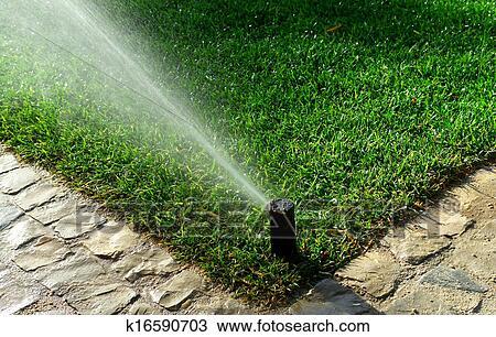 Banque de photo jardin syst me irrigation k16590703 recherchez des image - Systeme irrigation jardin ...