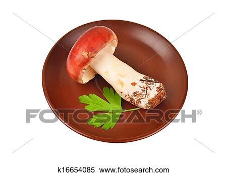图片银行 - boletus, edulis, 蘑菇, 在中, 粘土, 盘子.图片